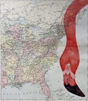 Hello Flamingo Fine-Art Print
