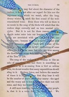 Cuckoo Fine-Art Print