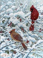 Winter Cardinal Painting Fine-Art Print