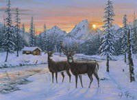 Whitetail & Cabin Fine-Art Print