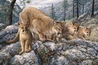 Cat Family Fine-Art Print