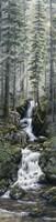 Cascade Wolves Fine-Art Print