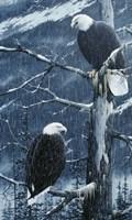 Another Rainy Day Fine-Art Print