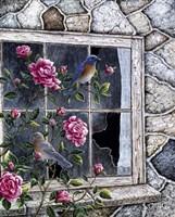 Bluebirds In Window Fine-Art Print