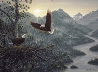 Eagles Nest Fine-Art Print