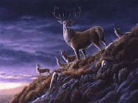 Threatening Sky Red Deer Fine-Art Print