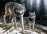 Over The Ridge Wolves Fine-Art Print