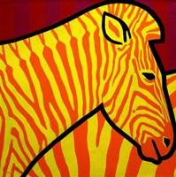 Cadmium Zebra 1 Fine-Art Print