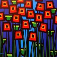 Night Poppies Fine-Art Print