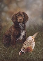 Cocker Spaniel Tia Fine-Art Print