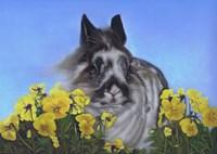 Flower Power Bunny Fine-Art Print
