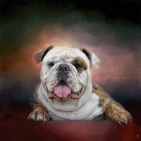 Bulldog Hanging Out Fine-Art Print