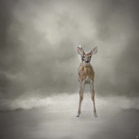 Stand Strong Little Fawn Fine-Art Print
