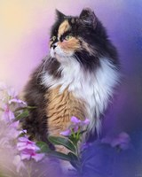 Calico Kitty In The Garden Fine-Art Print