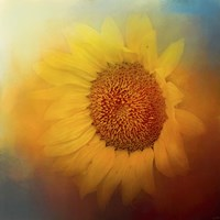 Sunflower Surprise Fine-Art Print