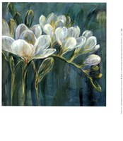 Freesia Blues II Fine-Art Print