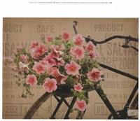 Globe Cycle Fine-Art Print