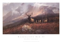 Bookcliffs Elk II Fine-Art Print
