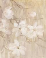 Magnolias I Fine-Art Print