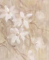 Magnolias III Fine-Art Print
