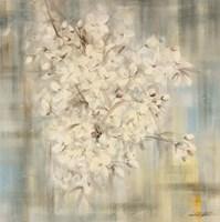 White Cherry Blossom I Fine-Art Print