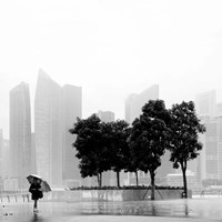 Singapore Umbrella Fine-Art Print