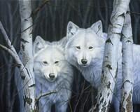 White Magic Fine-Art Print