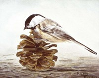 Black - Capped Chickadee Fine-Art Print