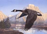 Goose Mtn Fine-Art Print