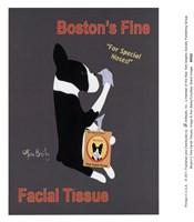 Boston's Fine Facial Tissues Fine-Art Print
