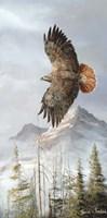 Binking In Flight Fine-Art Print