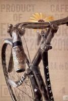 Pearl Street Cycle Fine-Art Print