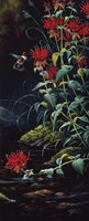 Ruby Throated Hummingbird Fine-Art Print