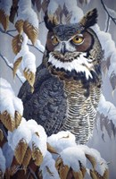 Winter Watch - Great Horned Owl Fine-Art Print