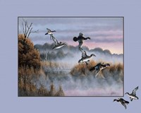 Ducks In Flight 2 Fine-Art Print