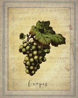 Grapes 2 Fine-Art Print