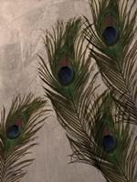 Peacock Feathers I Fine-Art Print