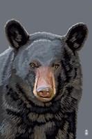 Black Bear 3 Fine-Art Print