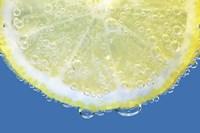 Lemon Slice Fine-Art Print