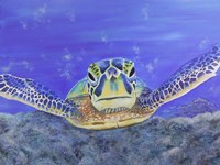 Sea Turtle Fine-Art Print