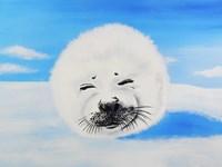 Harp Seal Fine-Art Print