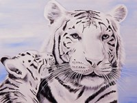 White Tiger and Cub Fine-Art Print