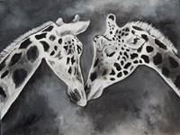 Kissing Giraffe Fine-Art Print