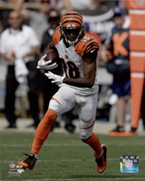 A.J. Green 2015 Action Fine-Art Print