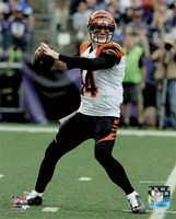 Andy Dalton 2015 Action Fine-Art Print