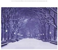 Winter In Central Park Fine-Art Print