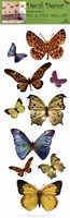 Butterfly Study Wall Decal