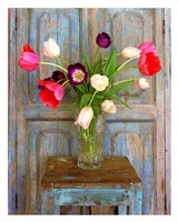 Tulips, Mexico Fine-Art Print