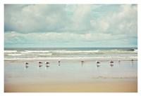 Beachcombing Fine-Art Print