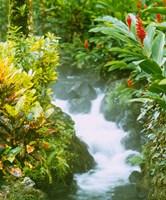 Waterfall, Tabacon, Costa Rica Fine-Art Print